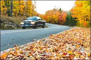 Autumn Maintenance Prevention Fall River